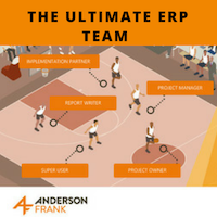 The Ultimate ERP team